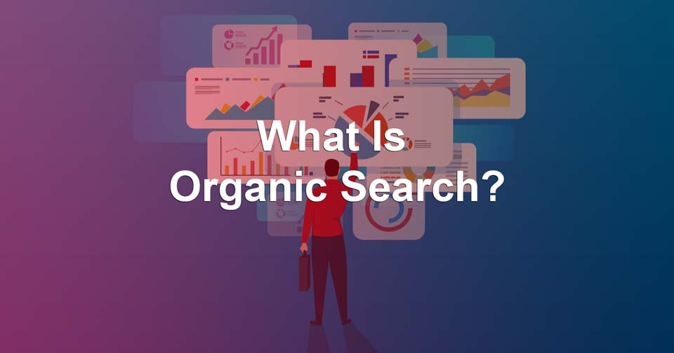what is organic search